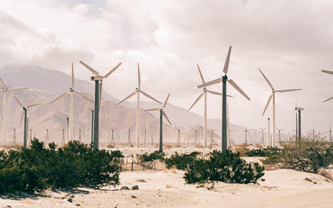Projetos sustentáveis e o uso inteligente dos recursos naturais
